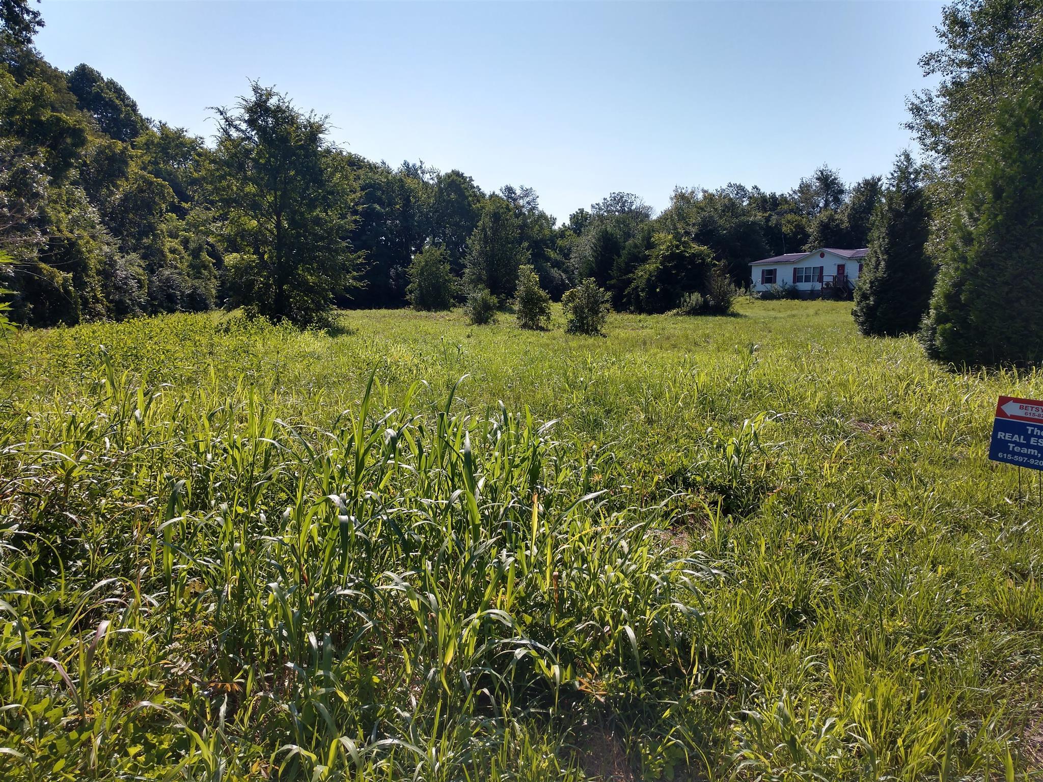 698 Meridian Dr, Smithville, TN 37166 - Smithville, TN real estate listing