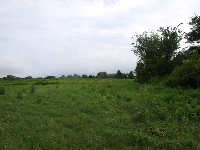 627 .50ac Barnes Road, Whitleyville, TN 38588 - Whitleyville, TN real estate listing