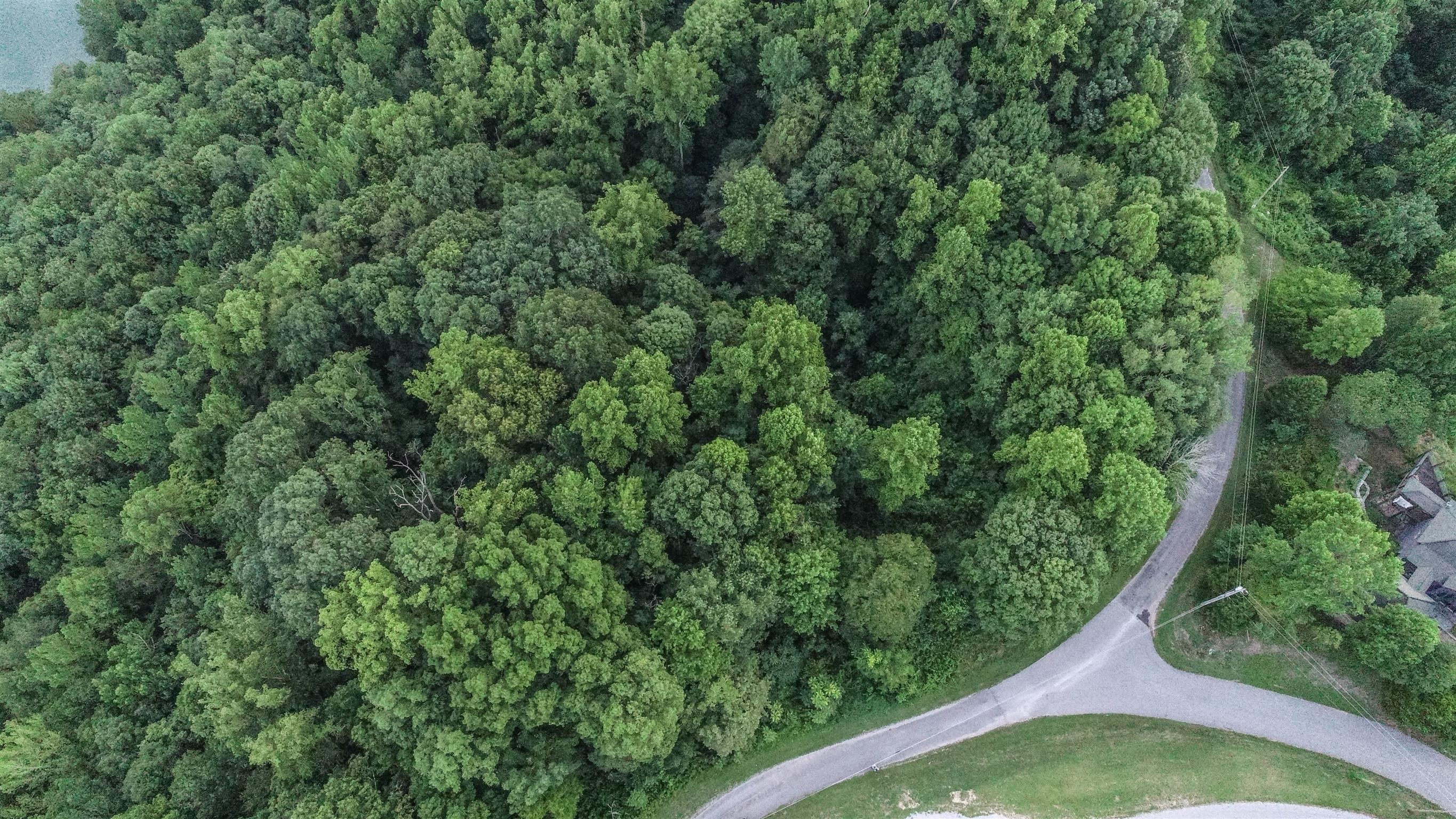 2 Lafever Ridge Rd, Silver Point, TN 38582 - Silver Point, TN real estate listing