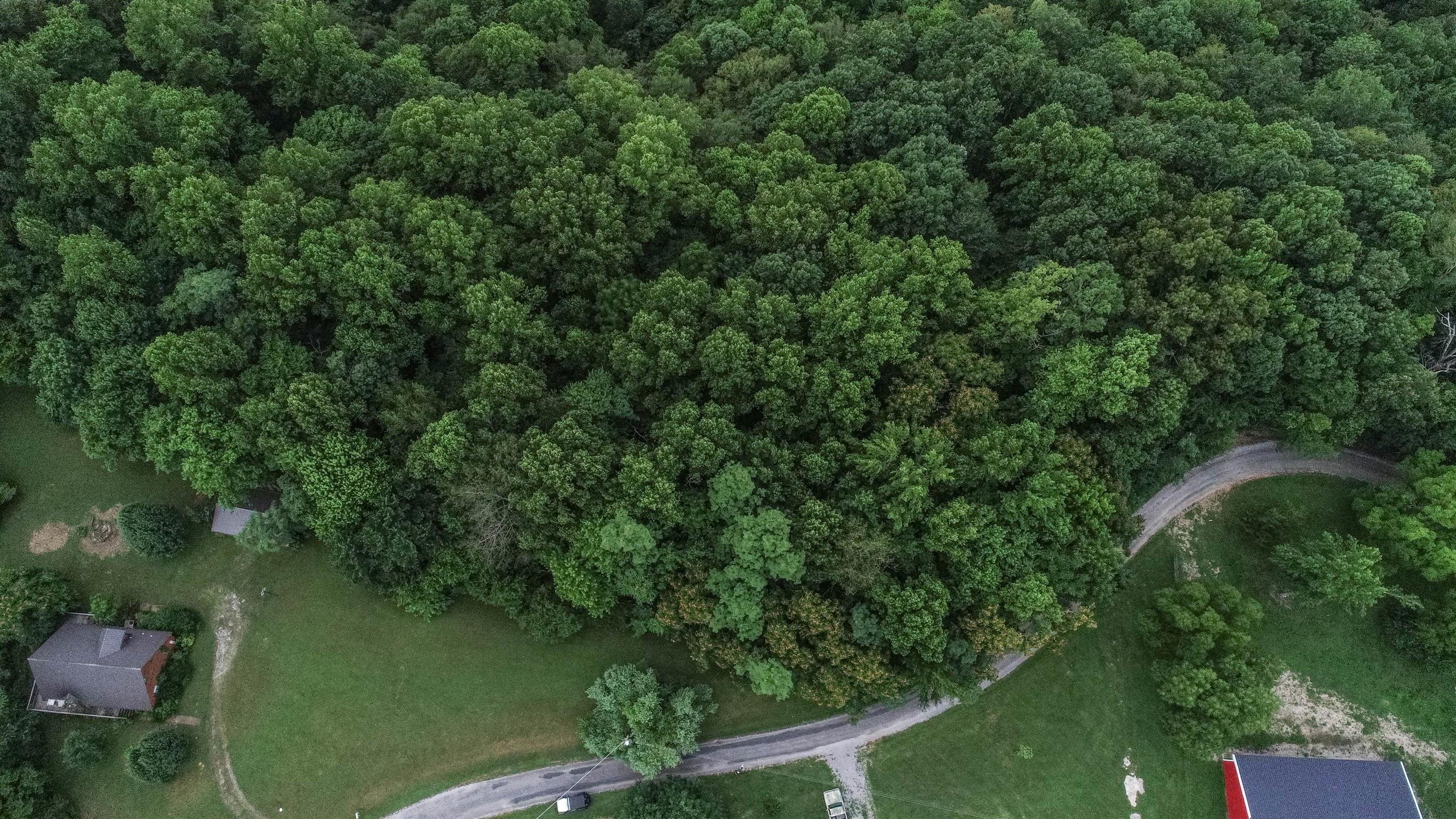 1 Lafever Ridge Rd, Silver Point, TN 38582 - Silver Point, TN real estate listing
