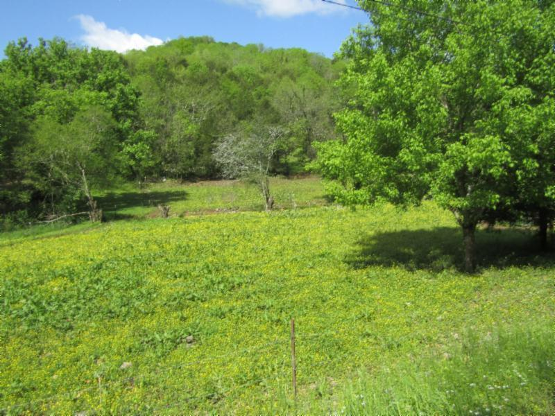 375 Trace Creek Rd, Whitleyville, TN 38588 - Whitleyville, TN real estate listing