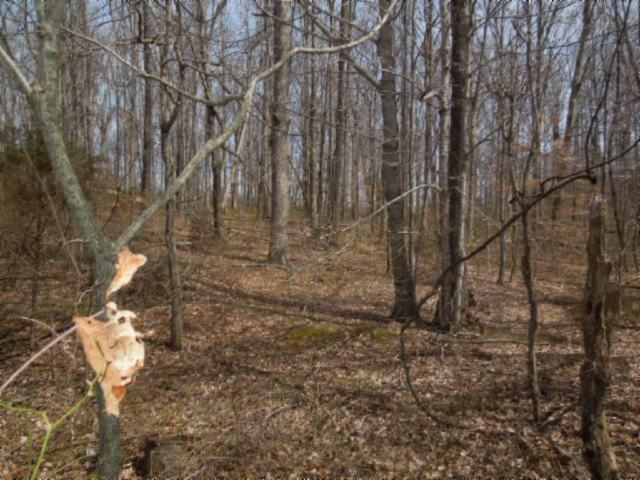 6 .50ac Hatcher Rd. , Moss, TN 38575 - Moss, TN real estate listing