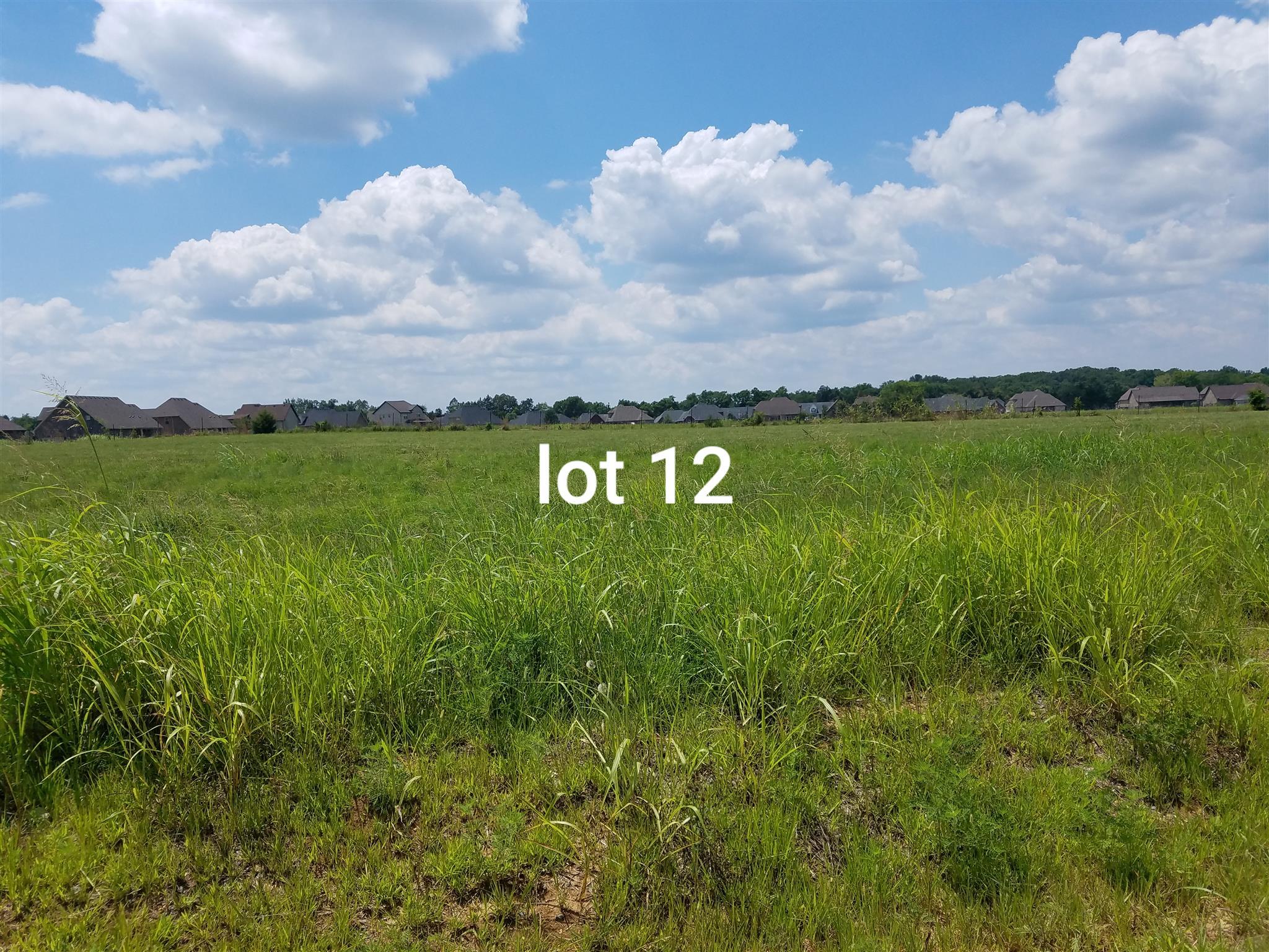 1026 Rhonda Dr, Christiana, TN 37037 - Christiana, TN real estate listing