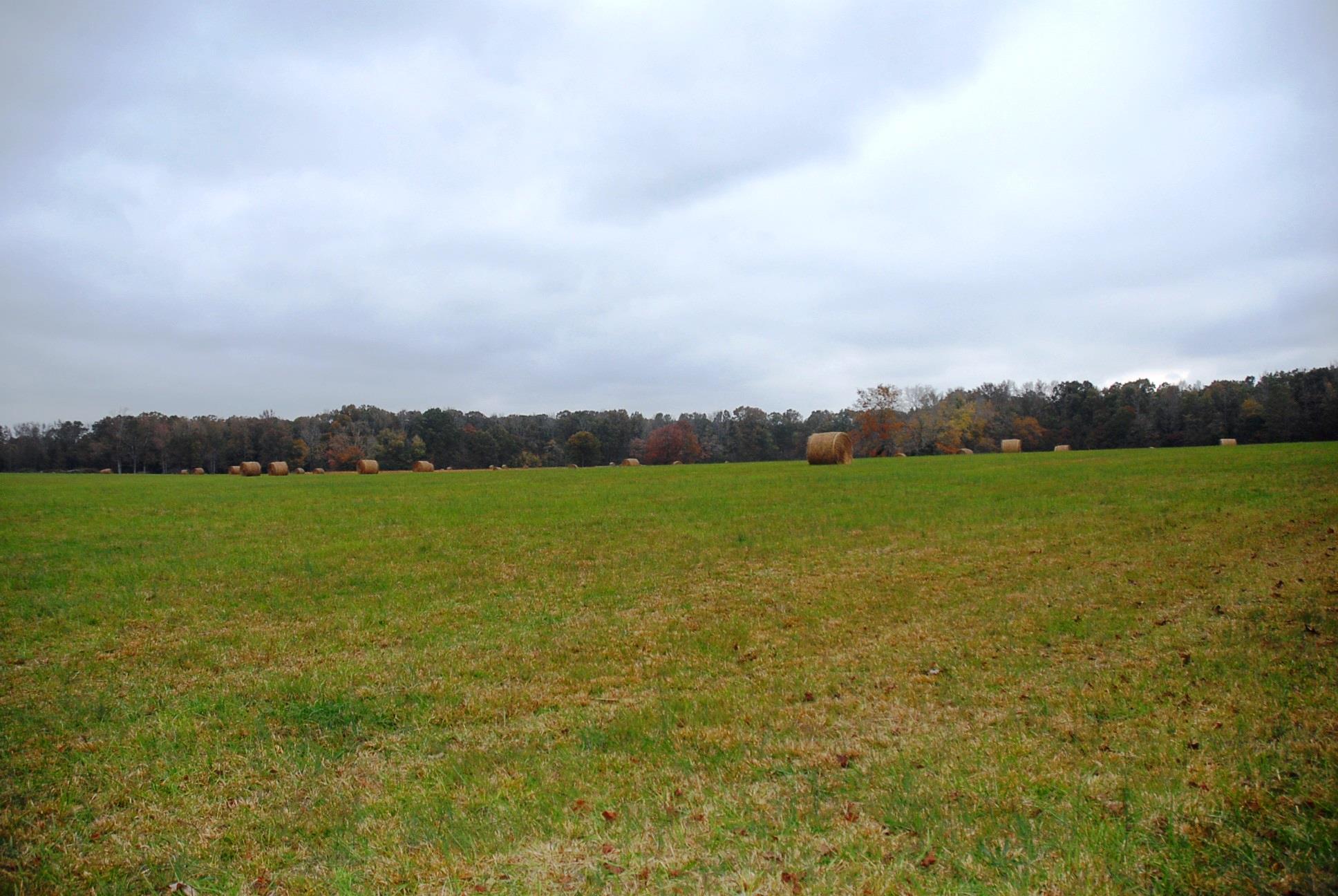 0 Ledford Mill Rd. - 5 Acre, Tullahoma, TN 37388 - Tullahoma, TN real estate listing