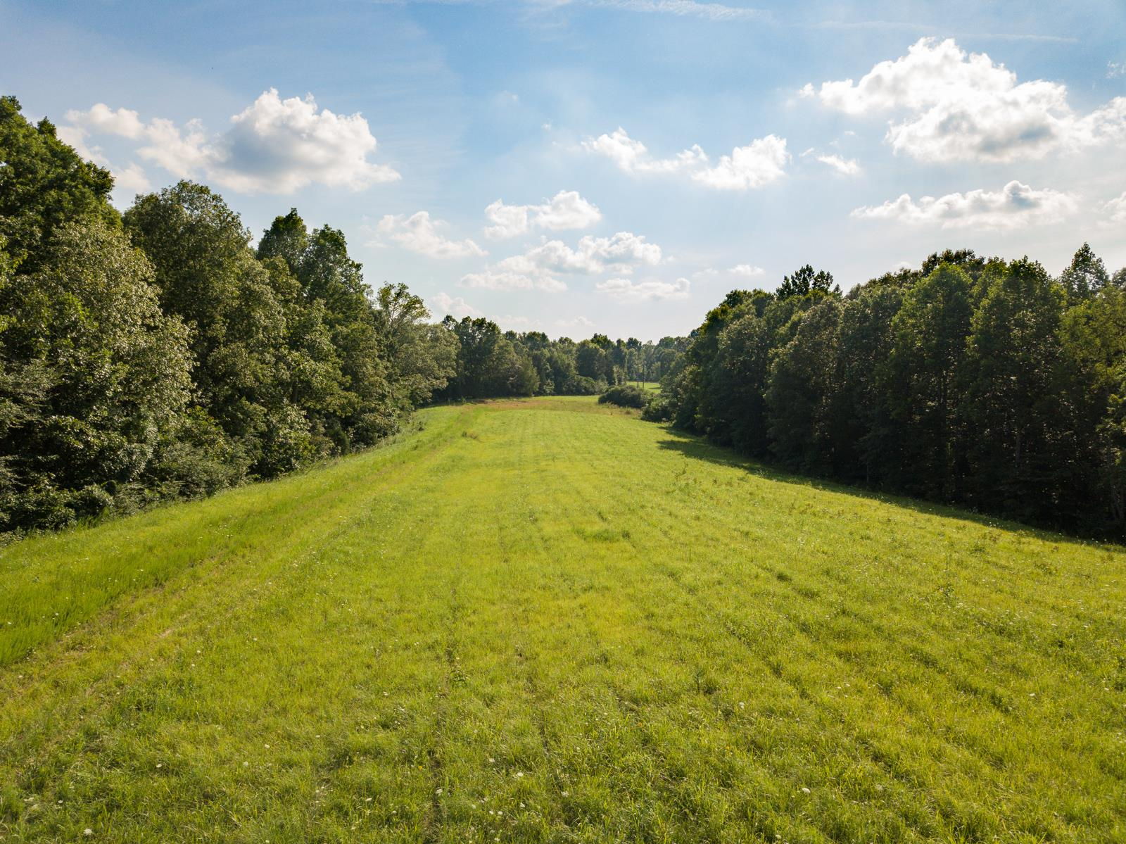 7913 Daugherty Capley Rd, Primm Springs, TN 38476 - Primm Springs, TN real estate listing