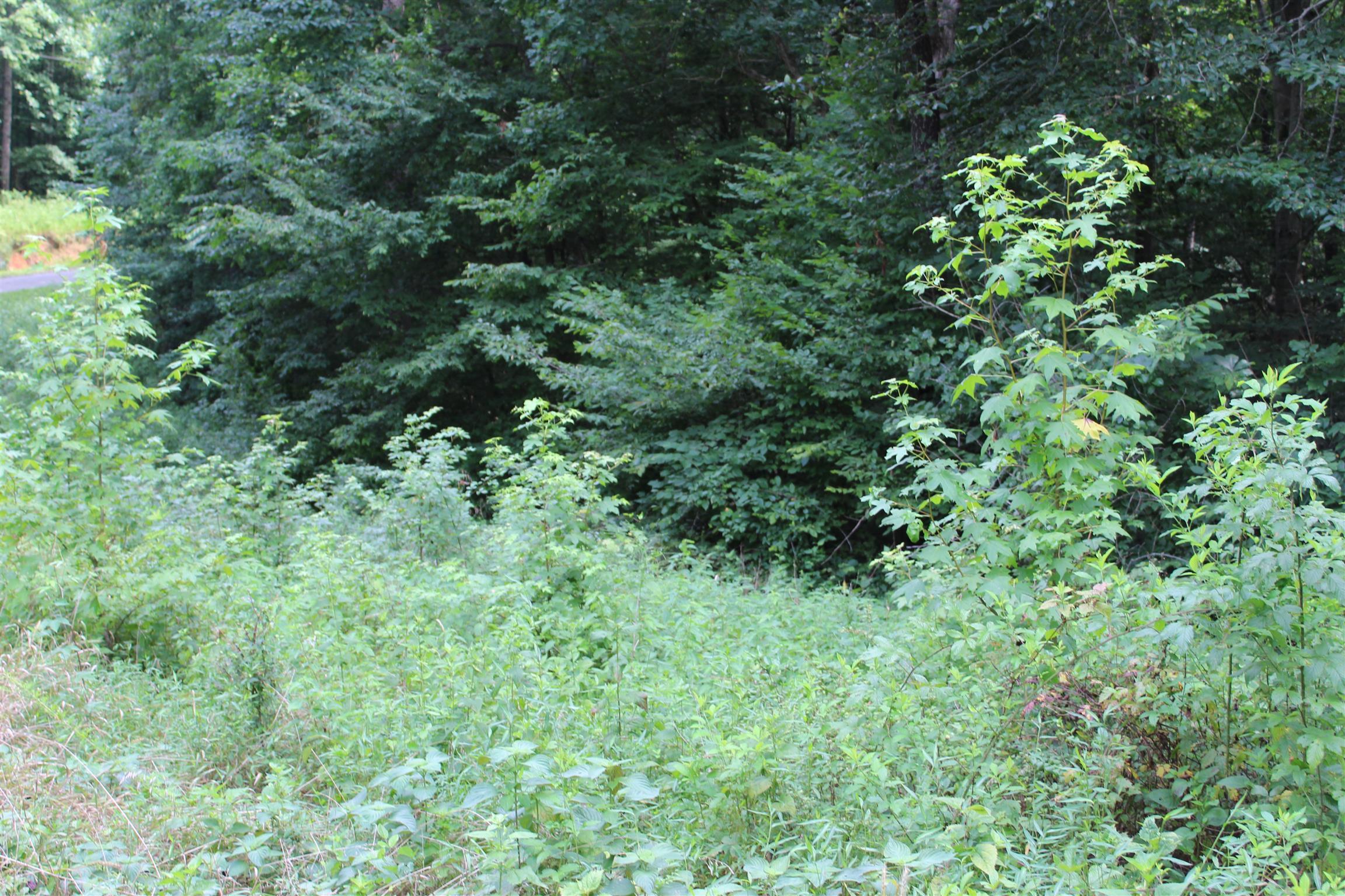 18 Patricia Cir, Indian Mound, TN 37079 - Indian Mound, TN real estate listing