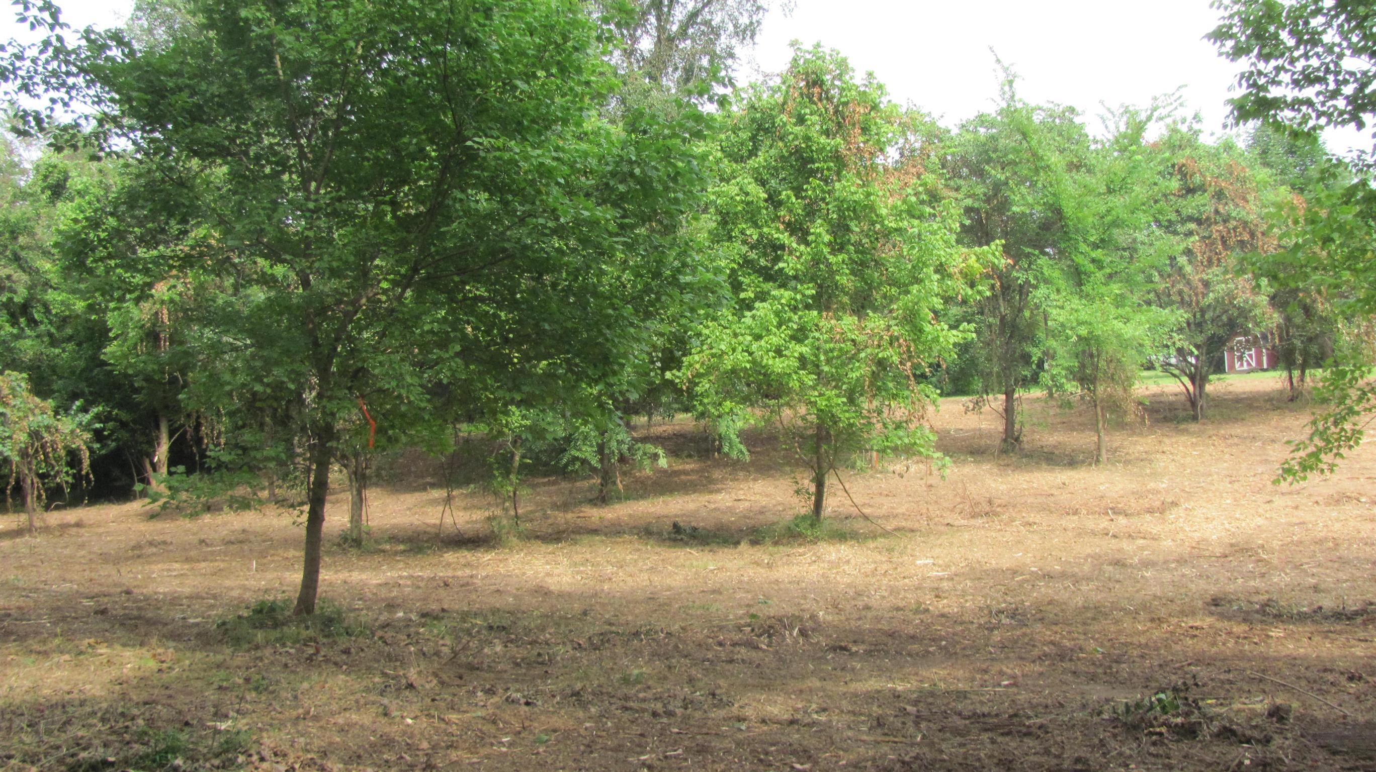 3973 Turnersville Rd, Cedar Hill, TN 37032 - Cedar Hill, TN real estate listing