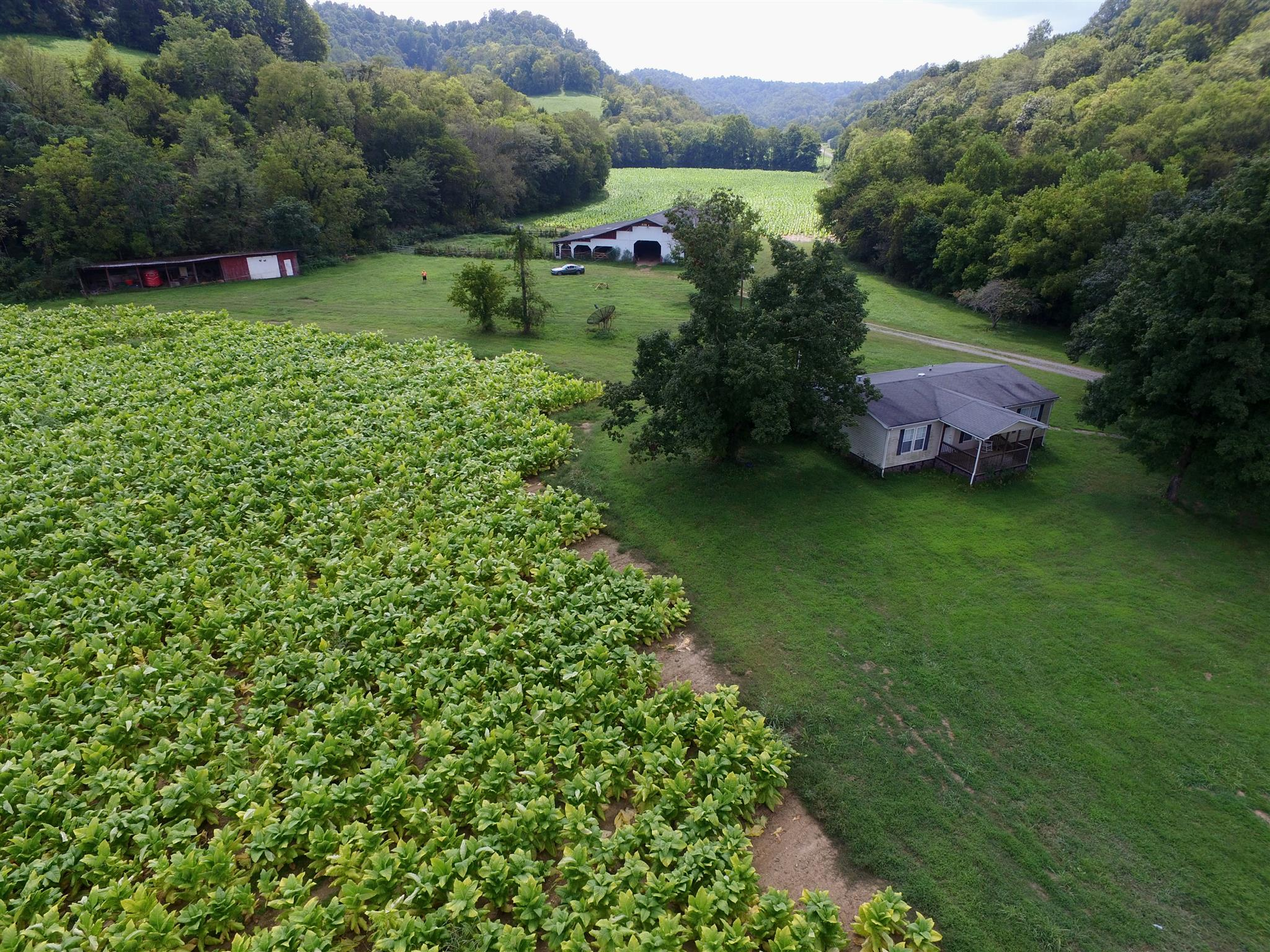 187 South Fork Rd, Whitleyville, TN 38588 - Whitleyville, TN real estate listing