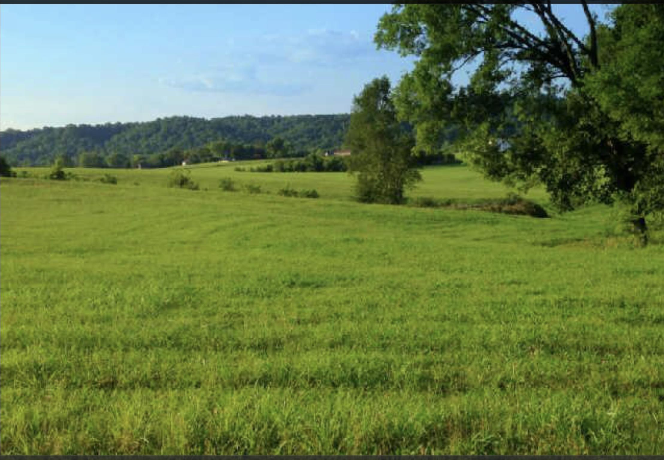 0 Cory Ln, Duck River, TN 38454 - Duck River, TN real estate listing