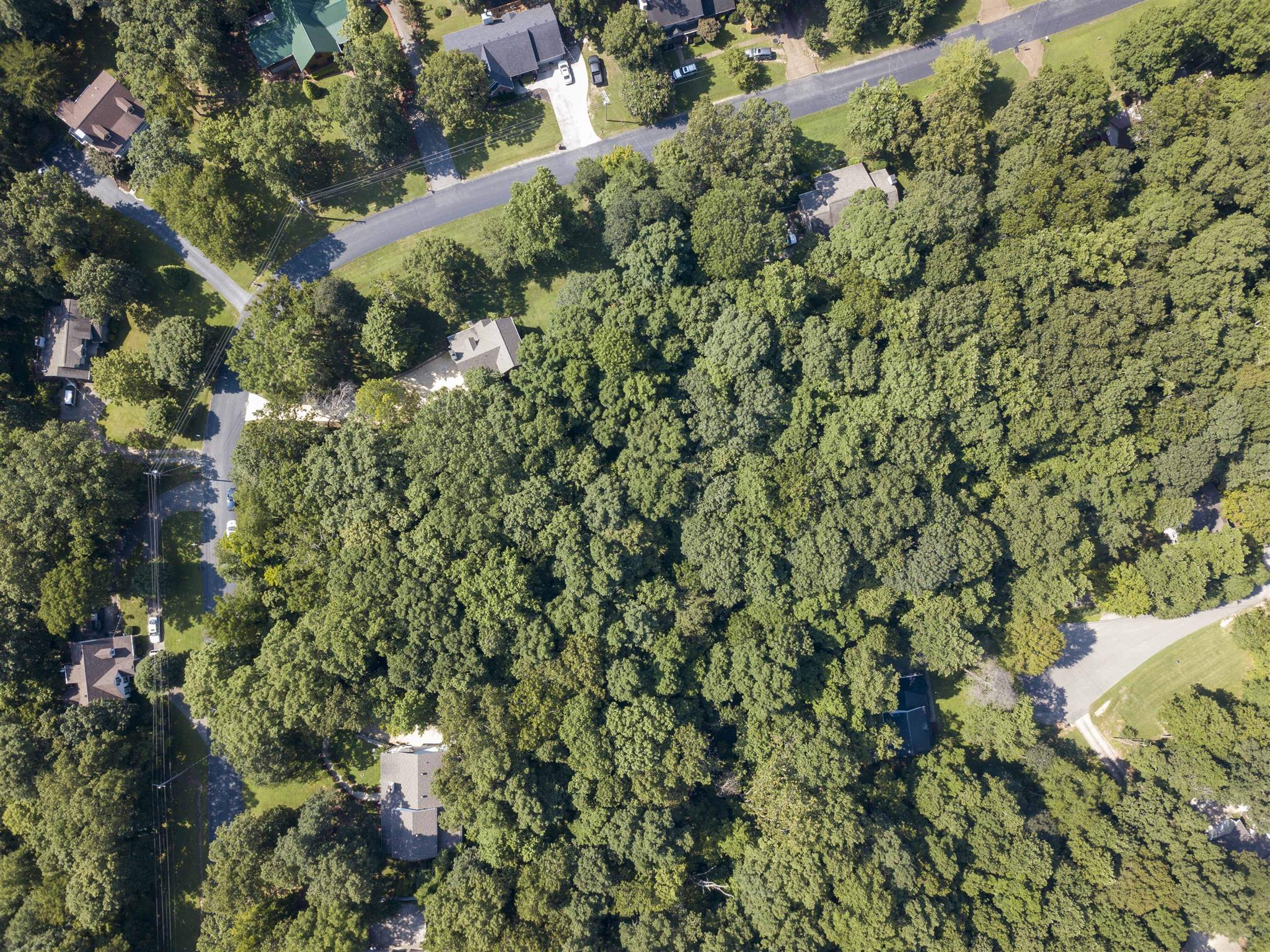 0 Tanglewood Dr, Pegram, TN 37143 - Pegram, TN real estate listing