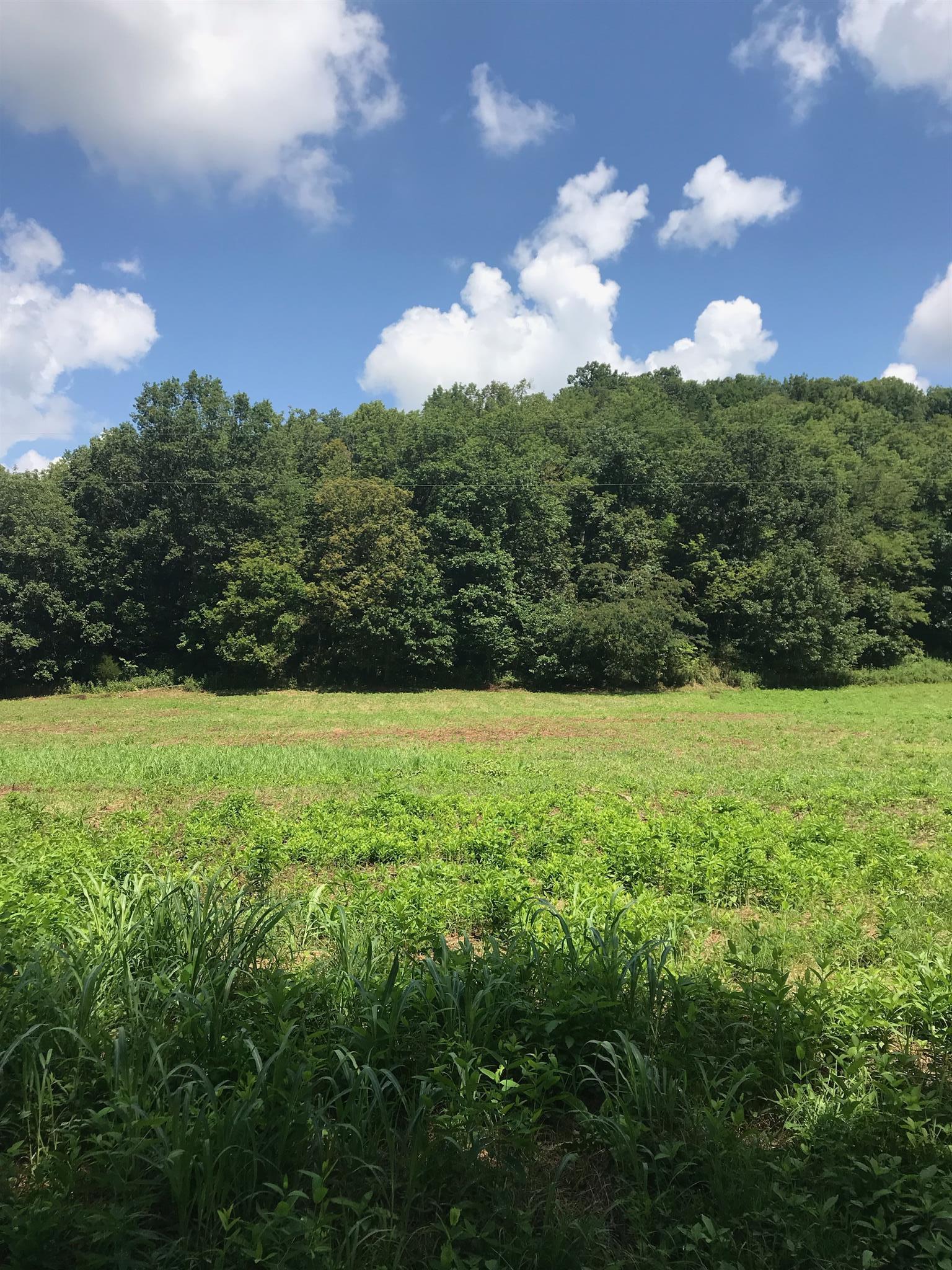 0 ford hollow, Lafayette, TN 37083 - Lafayette, TN real estate listing