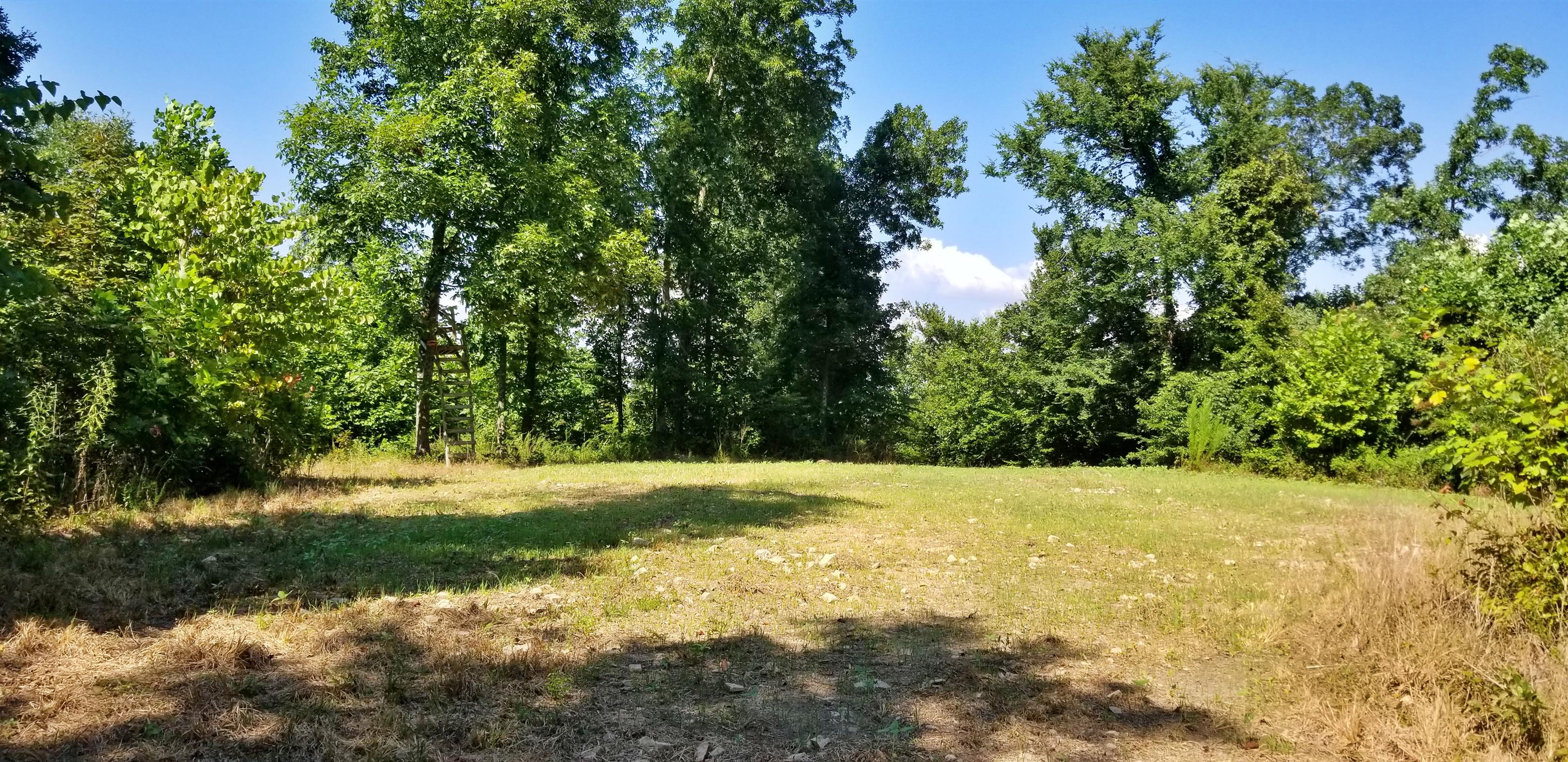 0 Cuba Landing Rd Property Photo - Waverly, TN real estate listing