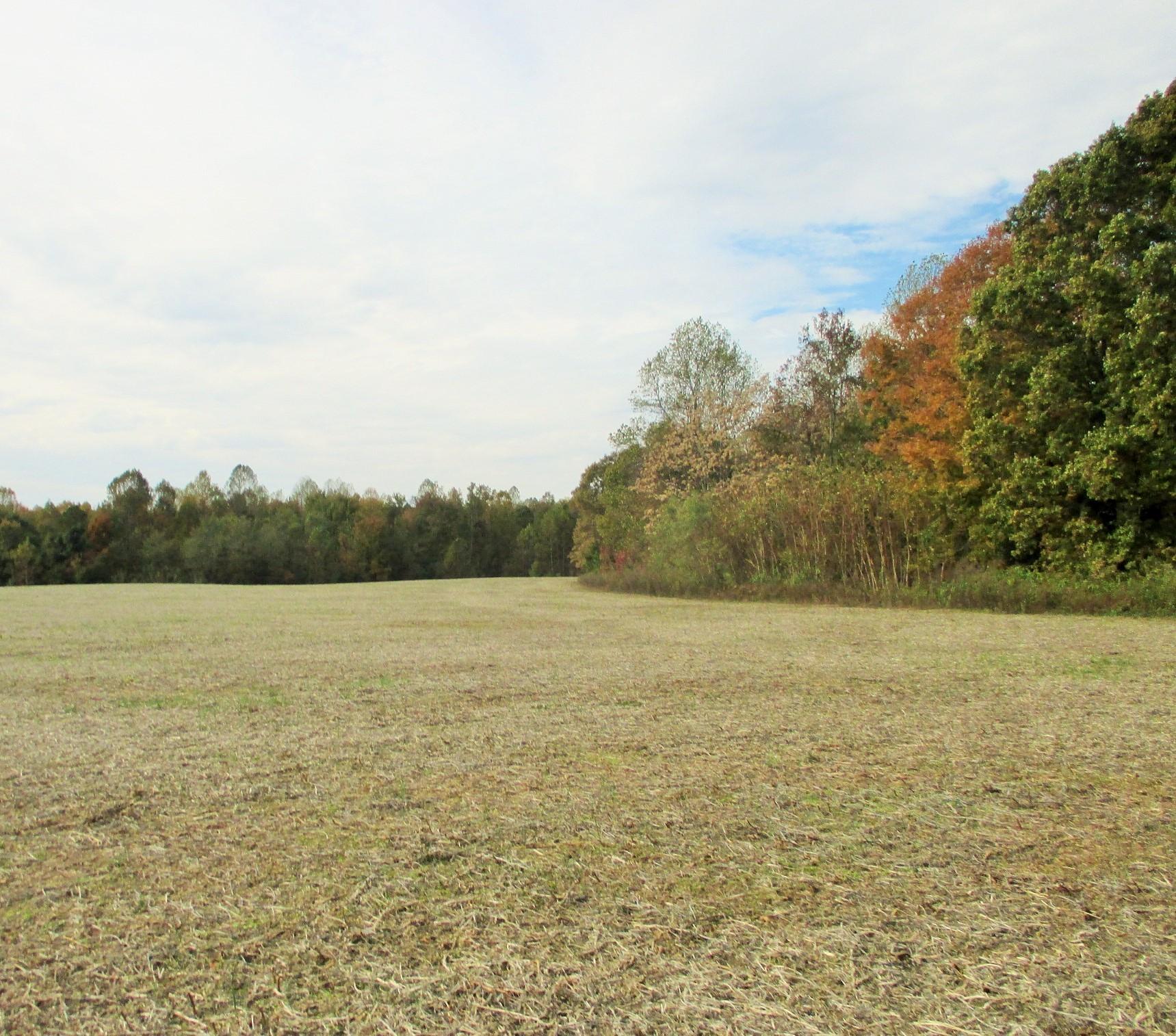 0 Paul Harrell Rd, Beechgrove, TN 37018 - Beechgrove, TN real estate listing