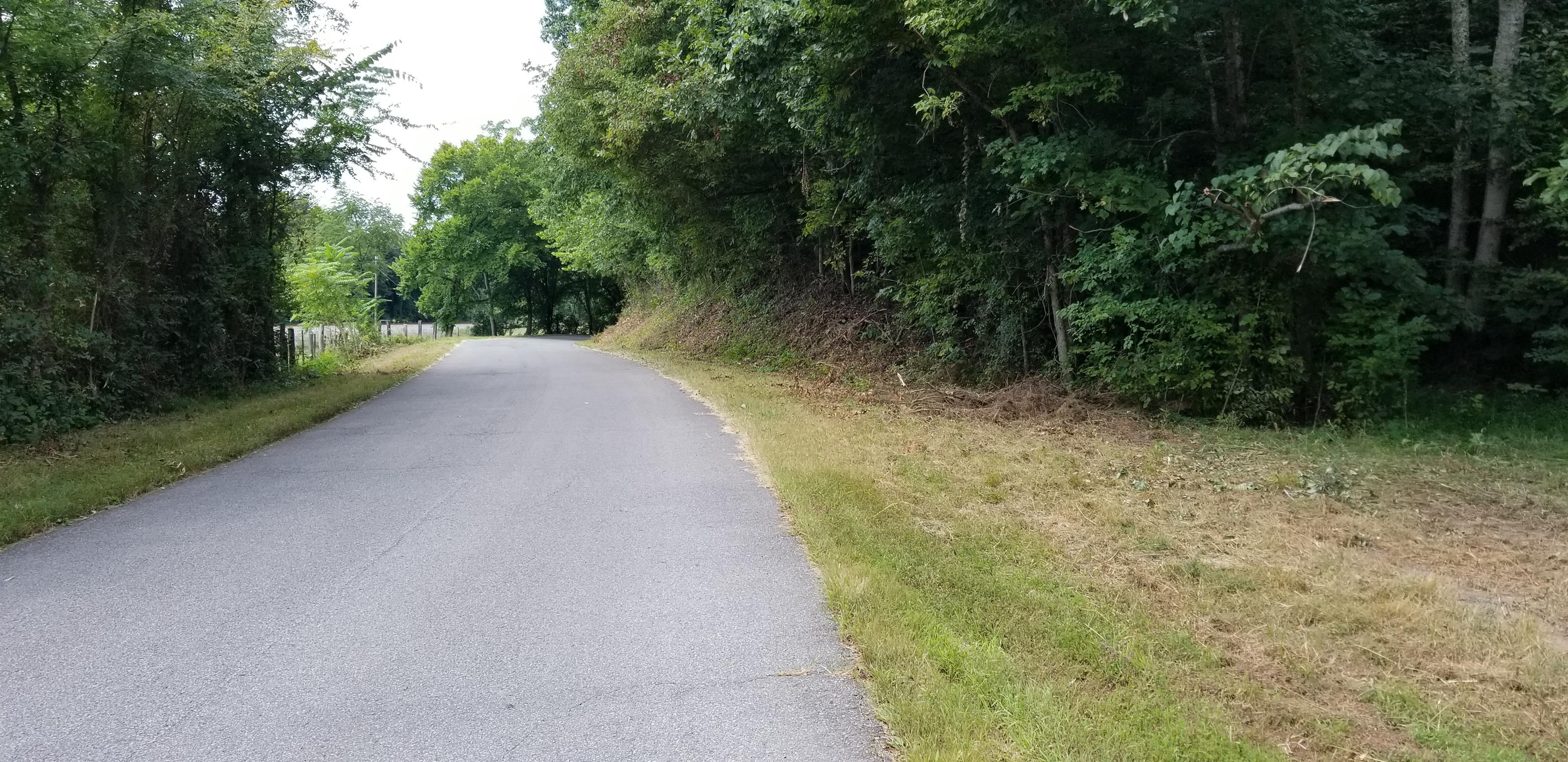 0 W Trace Creek Rd, Waverly, TN 37185 - Waverly, TN real estate listing