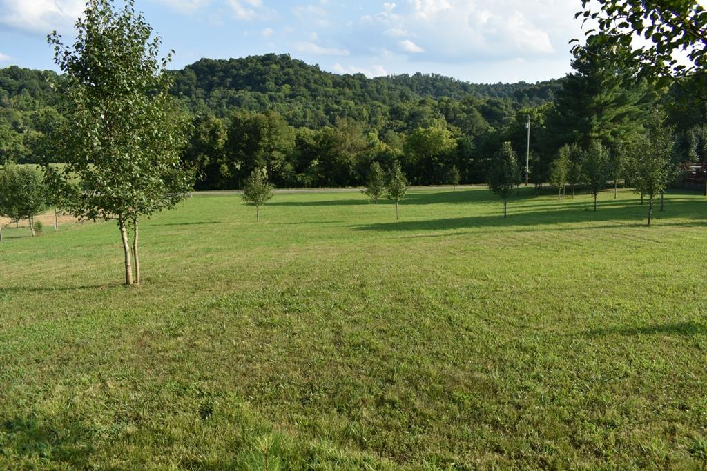 0 Nichols Rd Property Photo - Dixon Springs, TN real estate listing