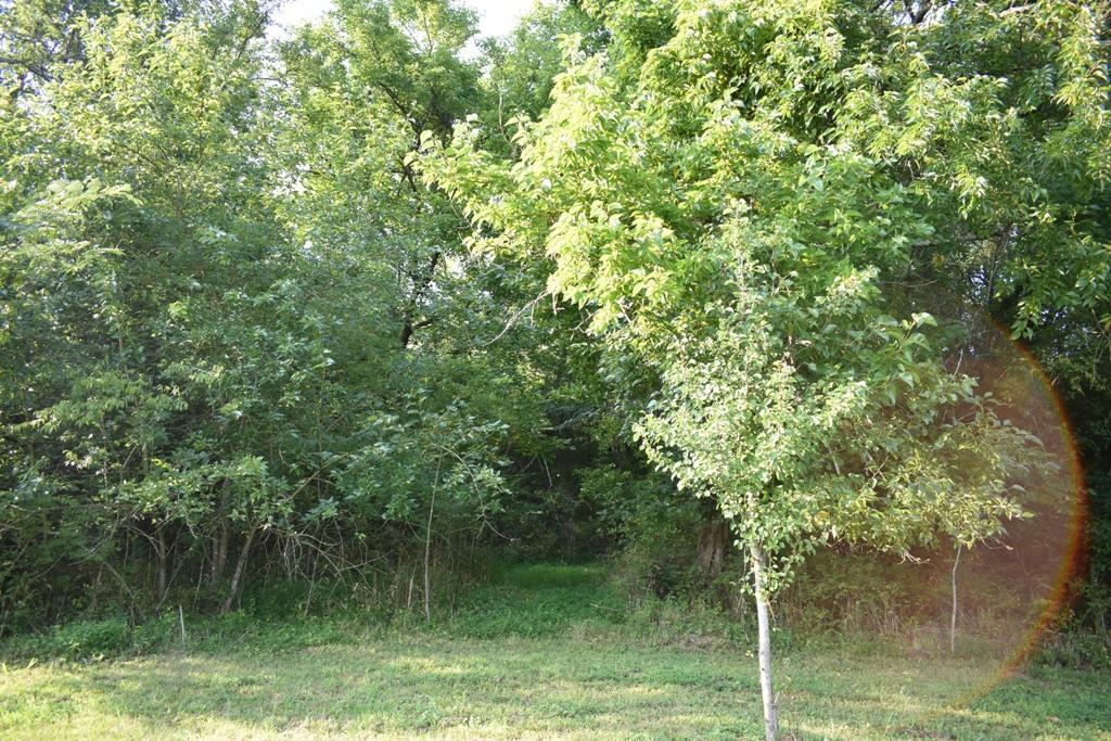 0 Nichols Rd, Dixon Springs, TN 37057 - Dixon Springs, TN real estate listing