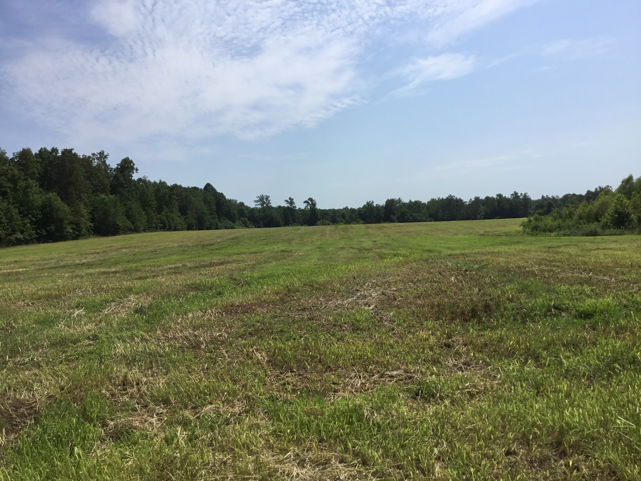 0 Espy Rd Property Photo - Bradyville, TN real estate listing