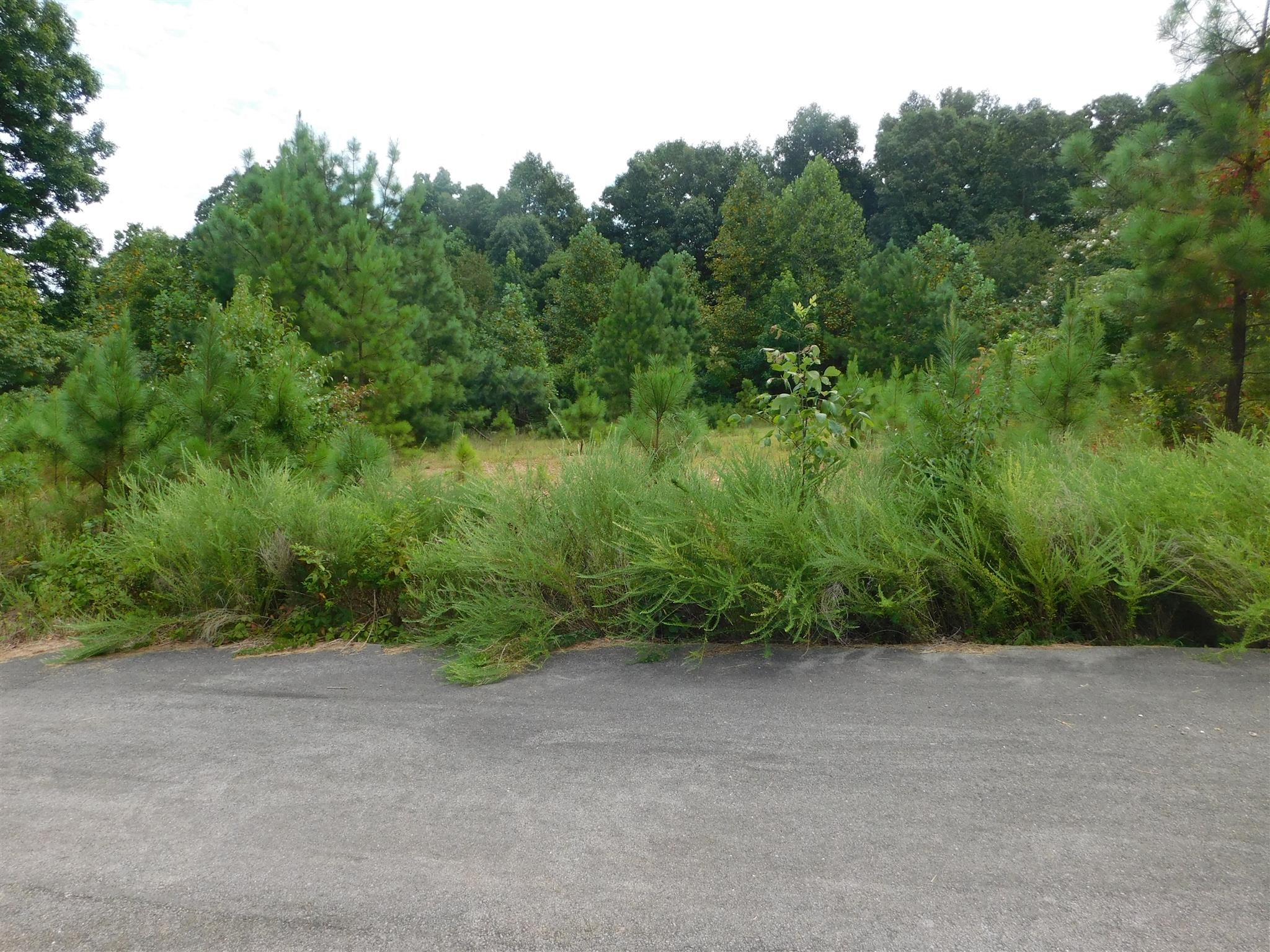 117 Stewart Ln, Waverly, TN 37185 - Waverly, TN real estate listing