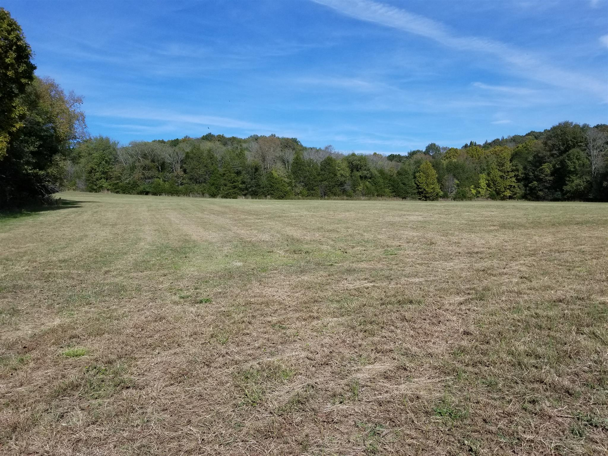 0 Whiteoak Rd W, Clifton, TN 38425 - Clifton, TN real estate listing