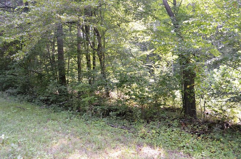 0 Neal Rd, Belvidere, TN 37306 - Belvidere, TN real estate listing