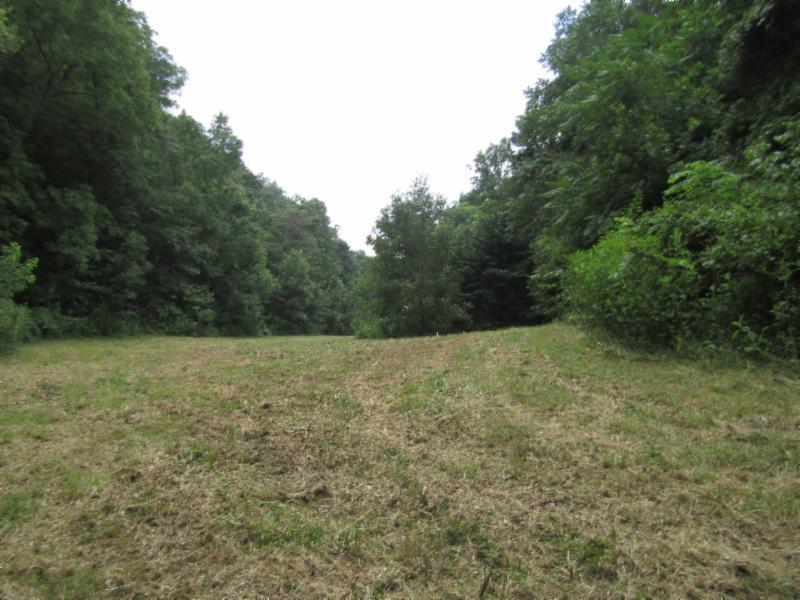 88 ac. Modock Hollow Road, Celina, TN 38551 - Celina, TN real estate listing