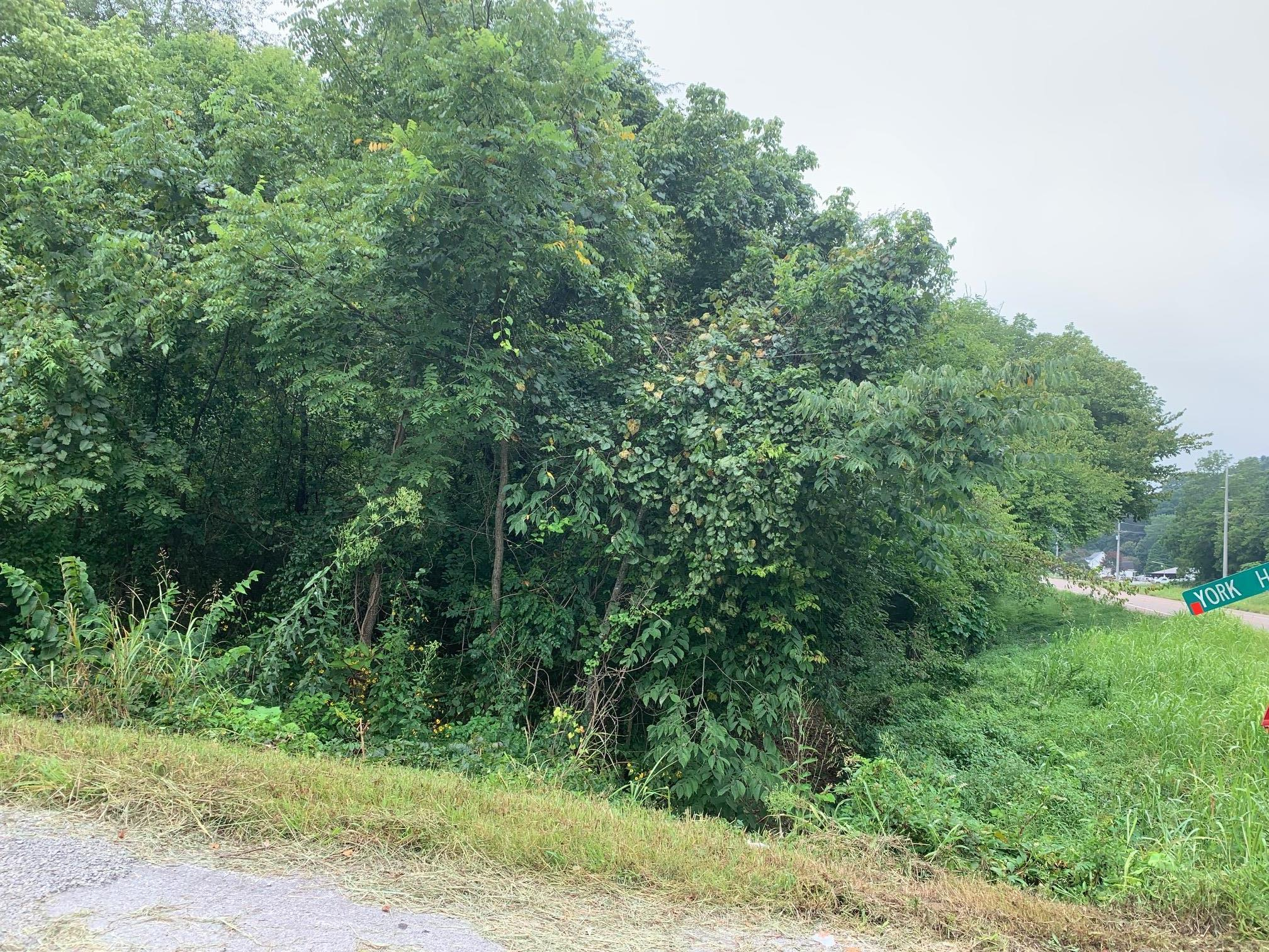 0 Minor Hill Hwy, S, Goodspring, TN 38460 - Goodspring, TN real estate listing