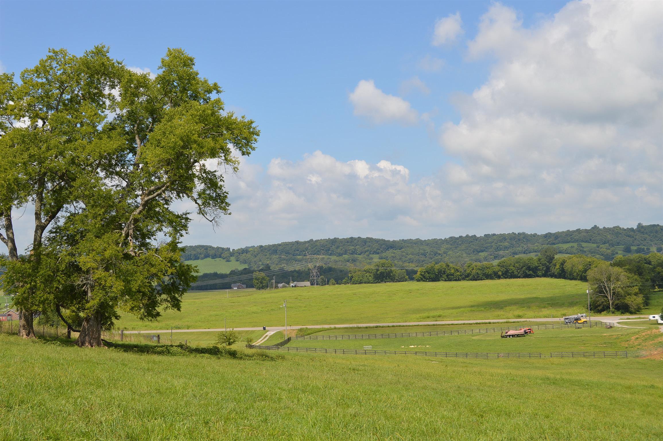 0 Pulaski Hwy, Cornersville, TN 37047 - Cornersville, TN real estate listing