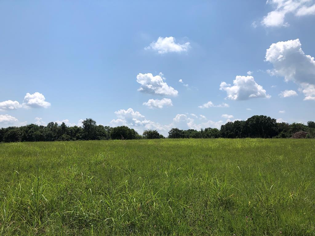 713 Gary Lane, Hopkinsville, KY 42240 - Hopkinsville, KY real estate listing