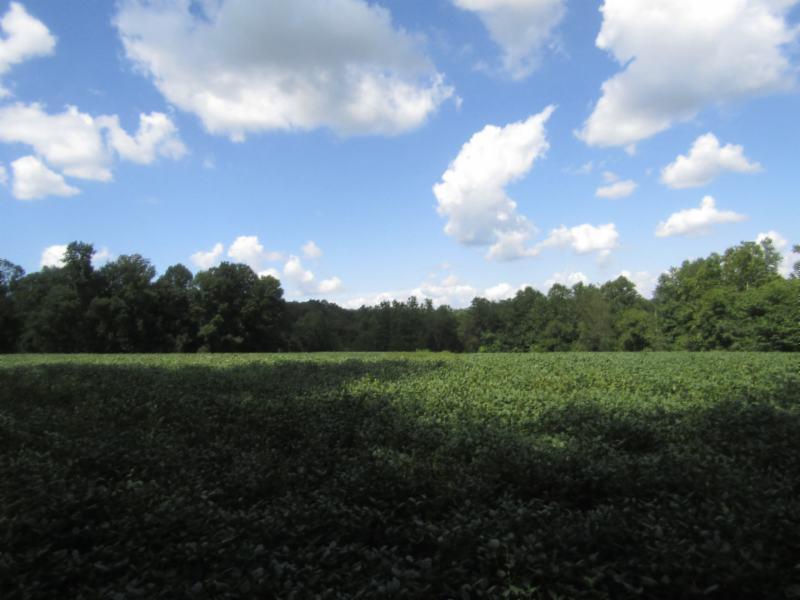 22 .90ac Rodgers Ln, Lafayette, TN 37083 - Lafayette, TN real estate listing