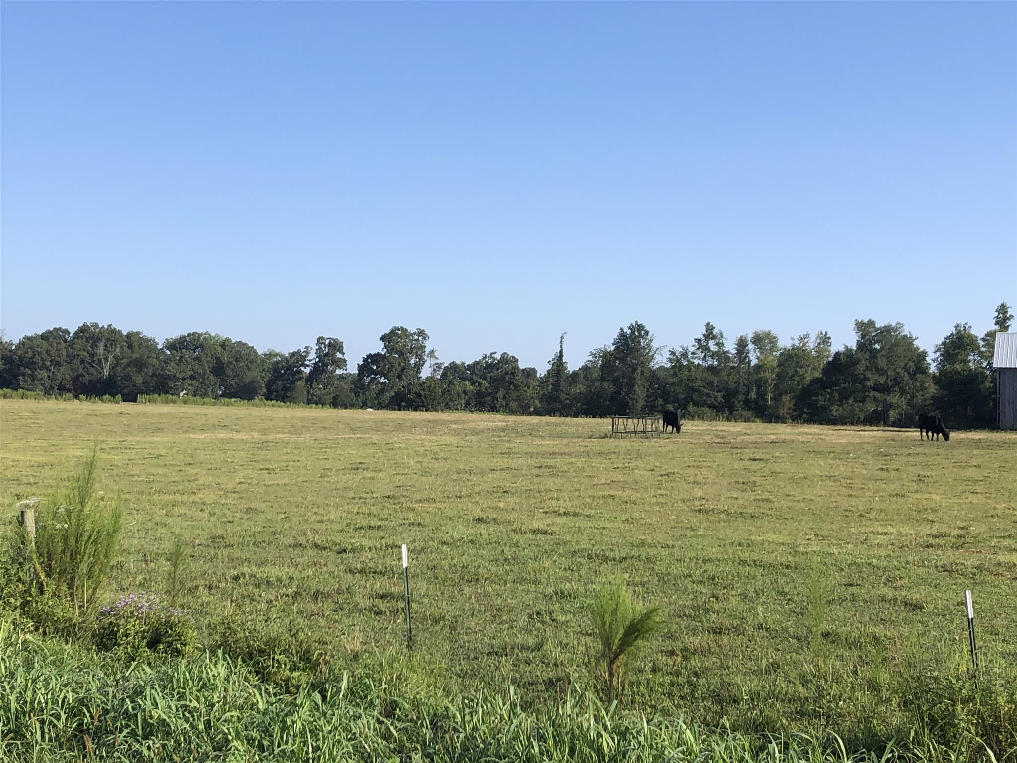 42 Marcella Falls Rd, Ethridge, TN 38456 - Ethridge, TN real estate listing