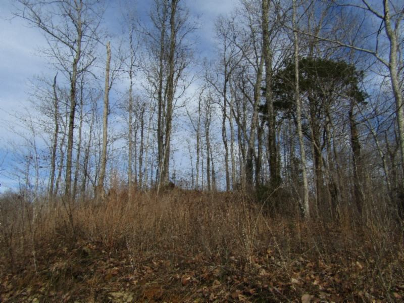 0 New Highway 52 Property Photo - Celina, TN real estate listing