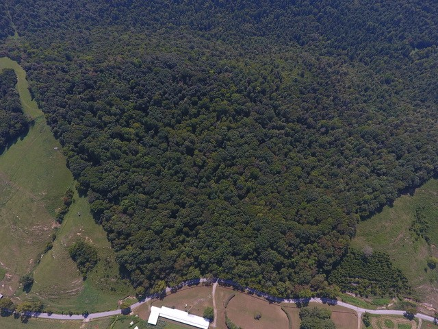 0 Cedar Bluff Rd, Lafayette, TN 37083 - Lafayette, TN real estate listing