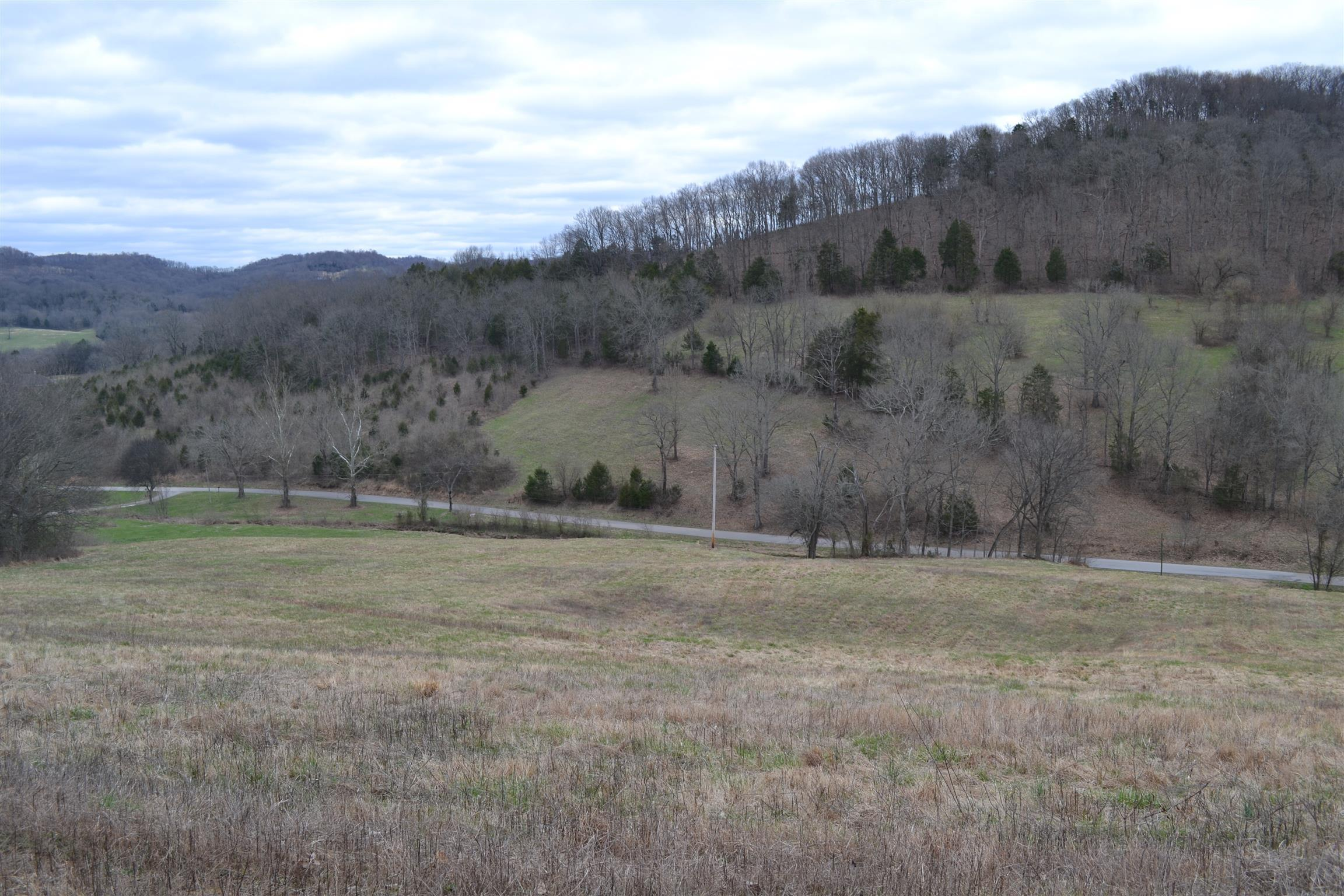10 Hog Hollow Ln, Bethpage, TN 37022 - Bethpage, TN real estate listing