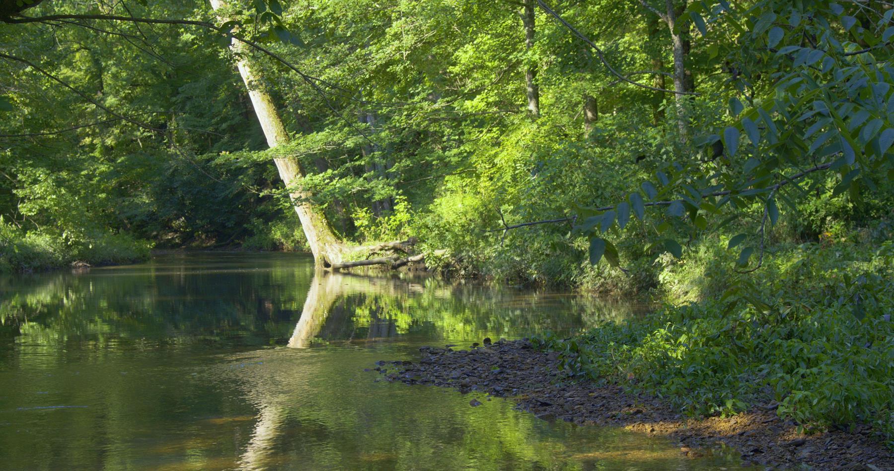 0 Big Swan Creek Rd, Hampshire, TN 38461 - Hampshire, TN real estate listing