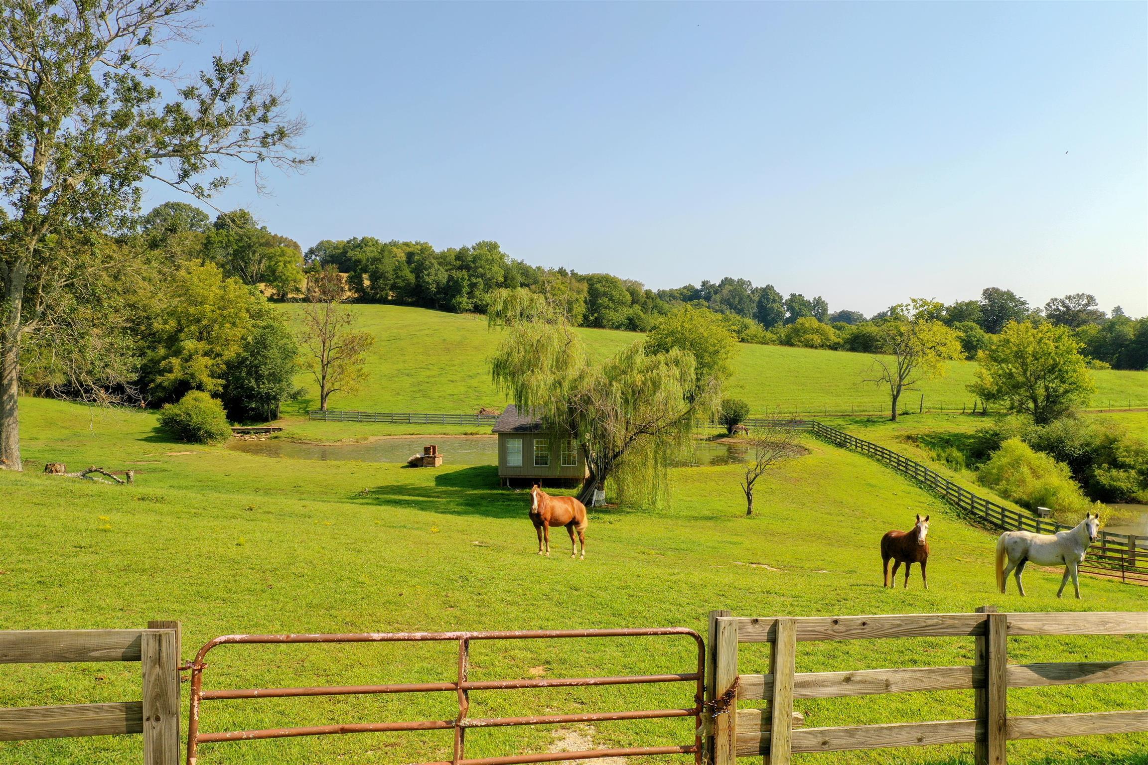 719 Waco Rd, Lynnville, TN 38472 - Lynnville, TN real estate listing
