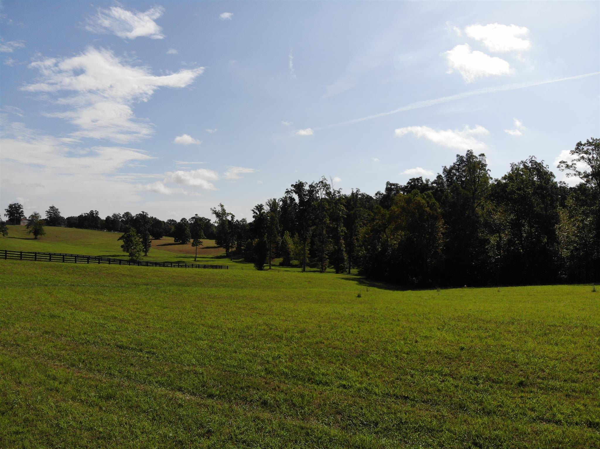 2 Younger Creek , Primm Springs, TN 38476 - Primm Springs, TN real estate listing