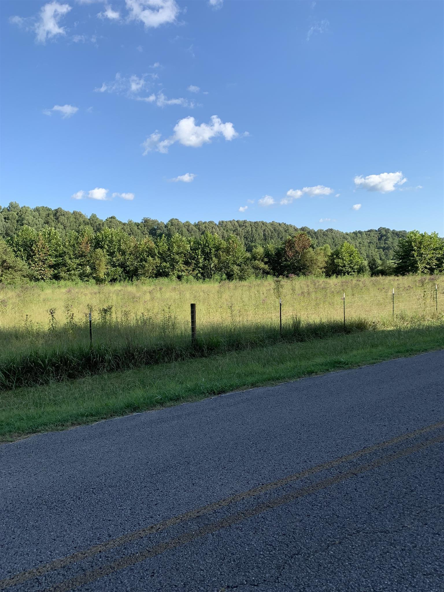 0 Hulsey Branch Rd, Minor Hill, TN 38473 - Minor Hill, TN real estate listing