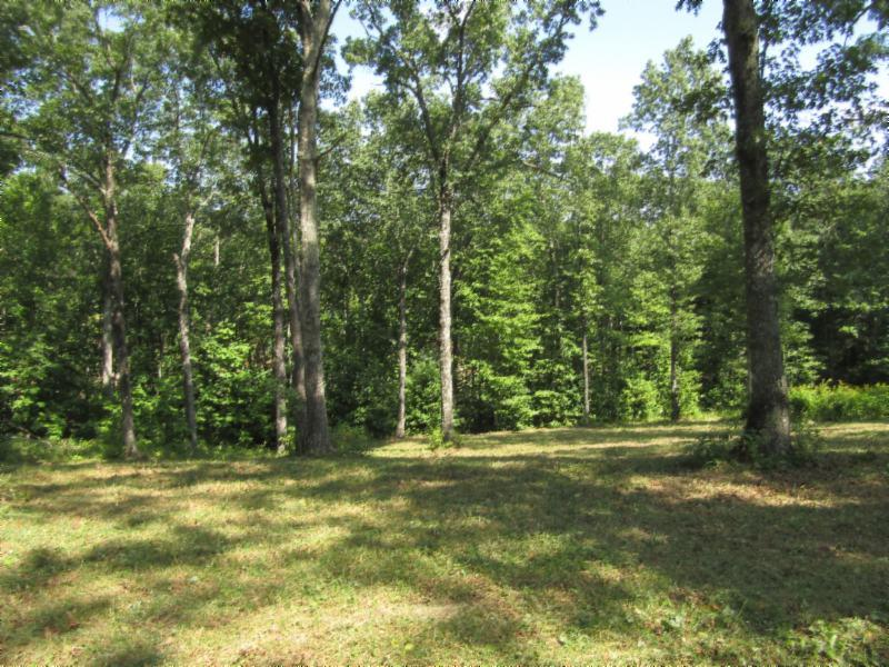 20 .23ac Bearpen Rd Property Photo - Jamestown, TN real estate listing