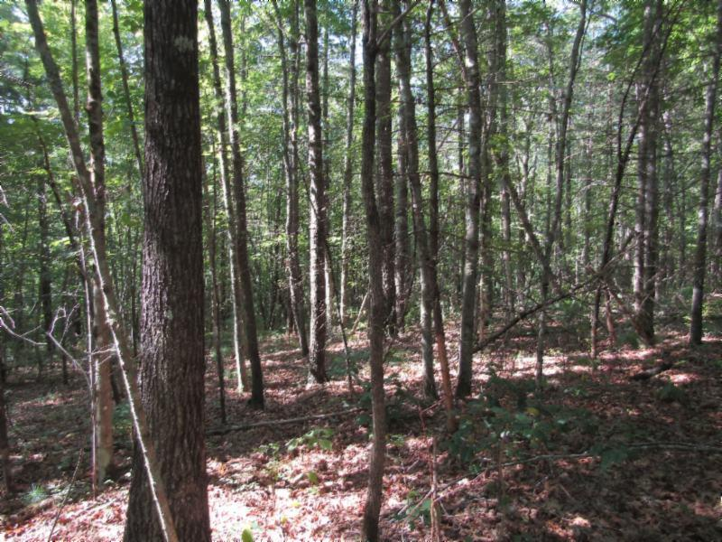 110 Hidden Ln Property Photo - Jamestown, TN real estate listing