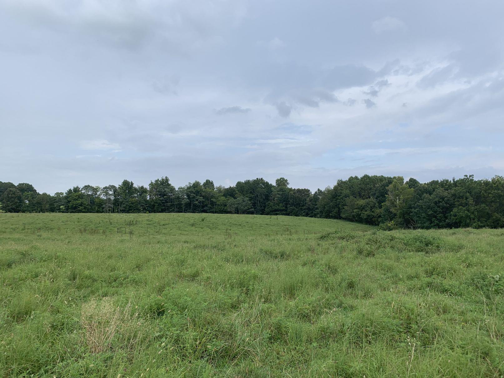 7440 Deer Ridge, Primm Springs, TN 38476 - Primm Springs, TN real estate listing