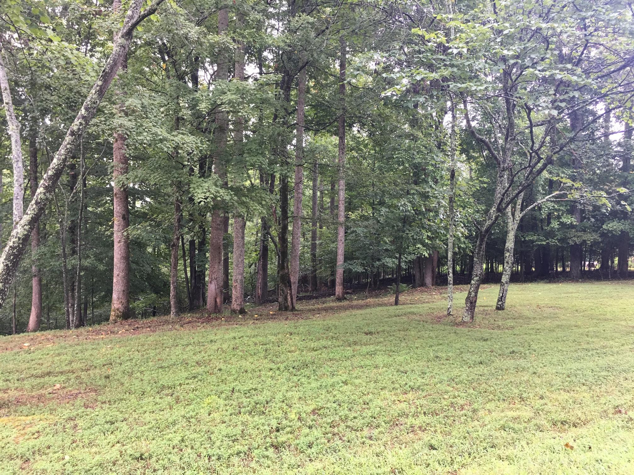 0 Ridgeview Run, Lynchburg, TN 37352 - Lynchburg, TN real estate listing