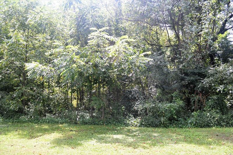 0 lot 1 Front St N, Cowan, TN 37318 - Cowan, TN real estate listing