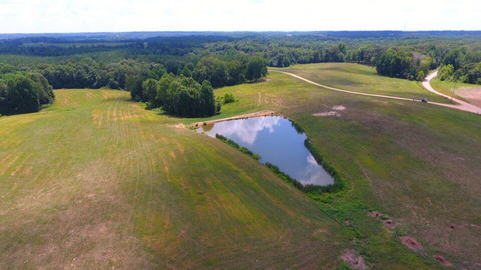 7 Mile Ridge Rd Property Photo - Indian Mound, TN real estate listing