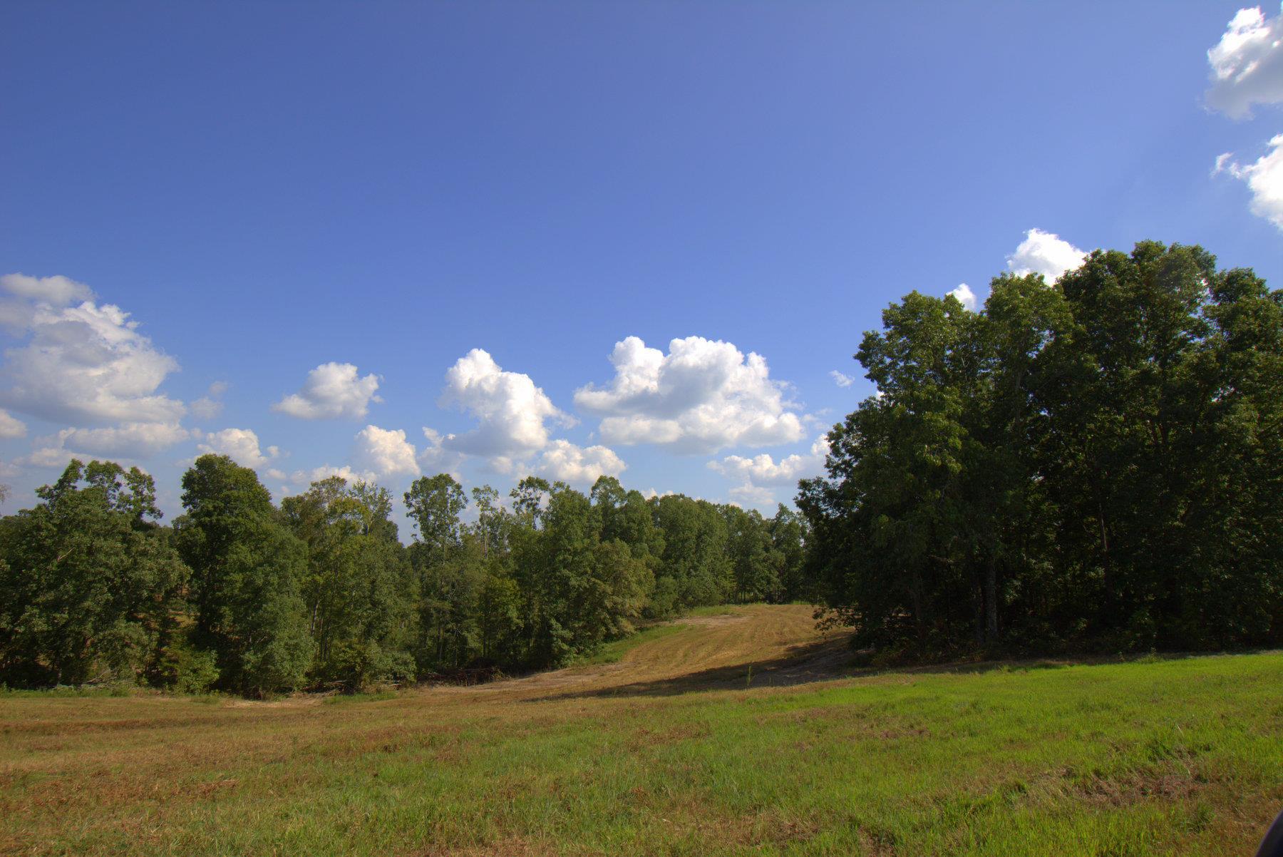 0 Marion Slayden Rd, Cumberland Furnace, TN 37051 - Cumberland Furnace, TN real estate listing