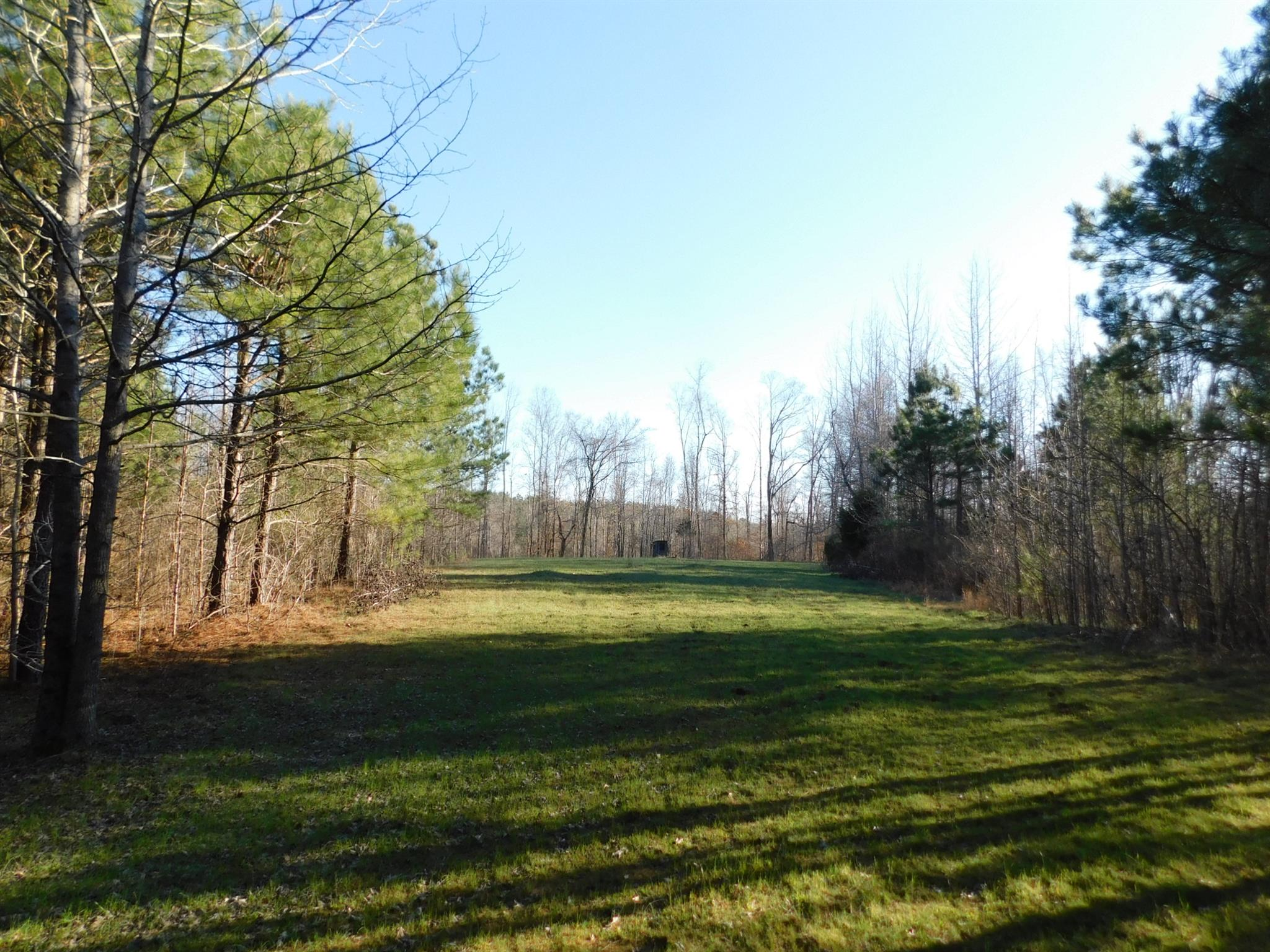 0 Martin Road, Adamsville, TN 38310 - Adamsville, TN real estate listing