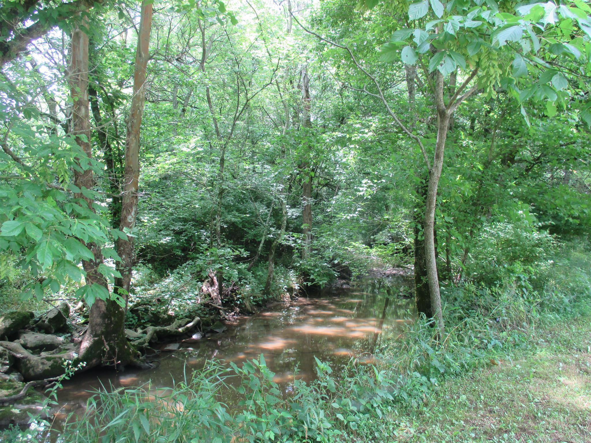 1698 Carters Creek Pike, Columbia, TN 38401 - Columbia, TN real estate listing