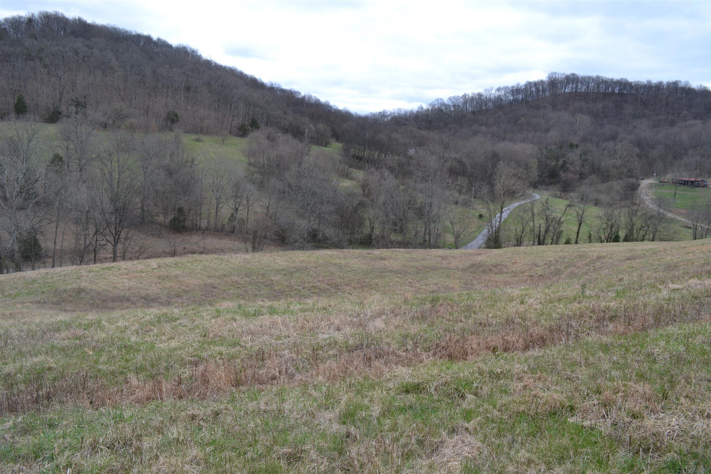 0 Hog Hollow Ln, Bethpage, TN 37022 - Bethpage, TN real estate listing