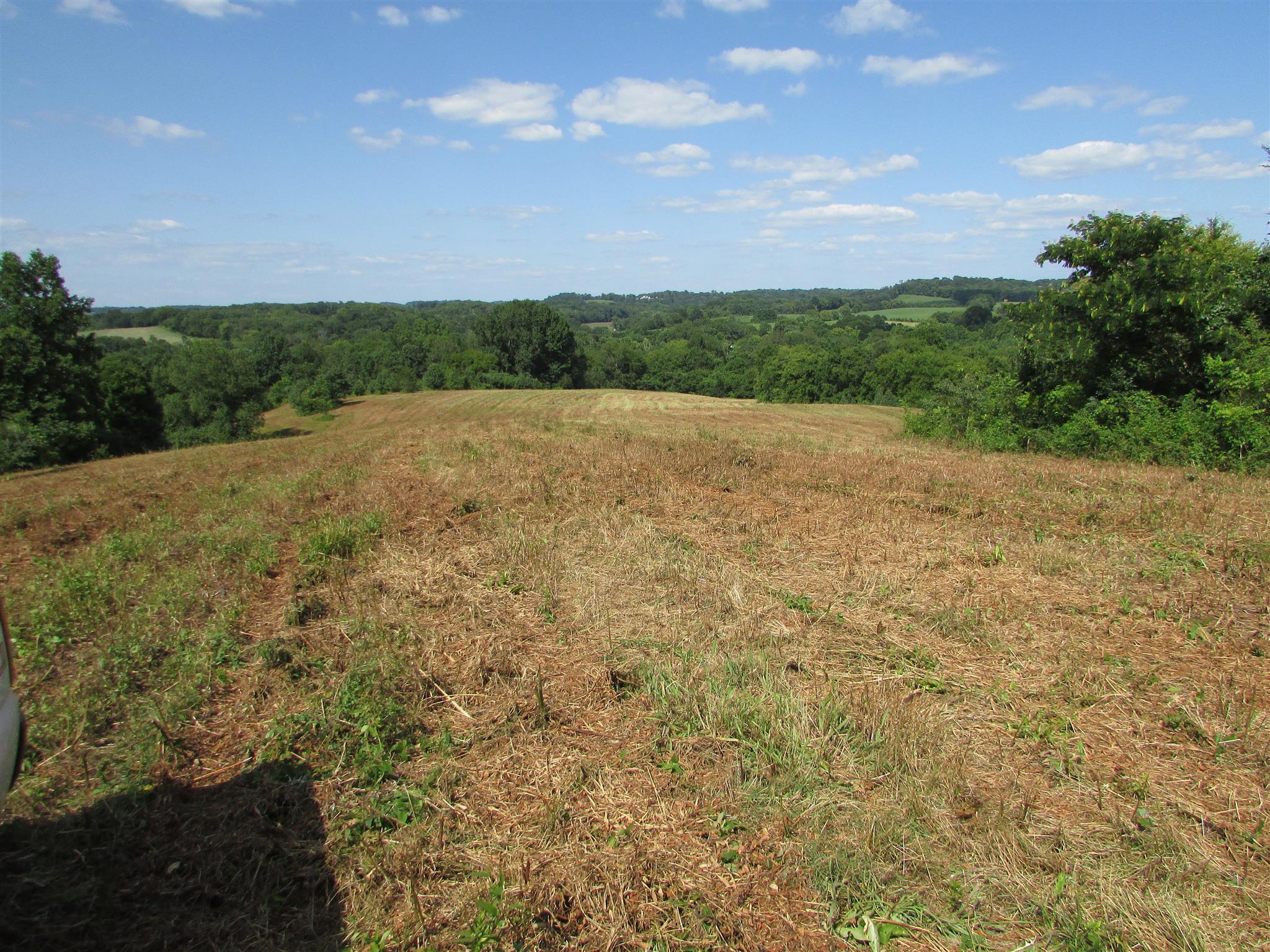 3089 Williamsport Pike, Williamsport, TN 38487 - Williamsport, TN real estate listing