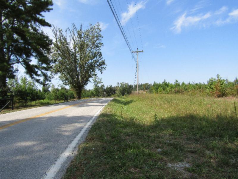 5647 Nashville Highway, Deer Lodge, TN 37726 - Deer Lodge, TN real estate listing