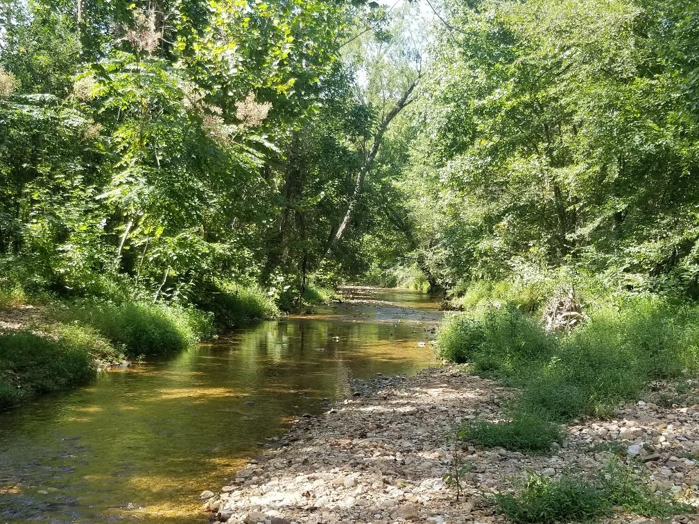 1720B Bear Creek Rd, Collinwood, TN 38450 - Collinwood, TN real estate listing